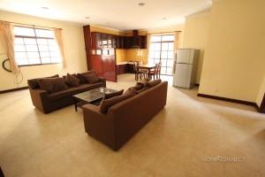 Large 1 bedroom apartment in BKK1
